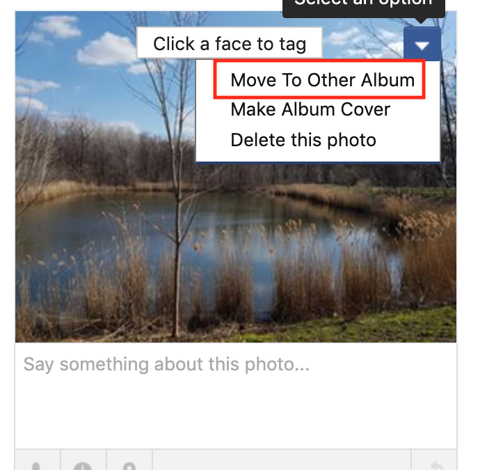 How to move a photo to another album in Facebook (2020)