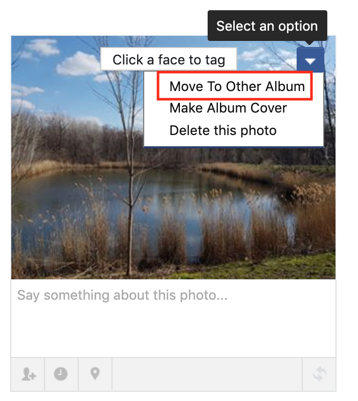 move photo to another album option